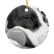 cute sad looking pitbull dog black white with ball ceramic ornament