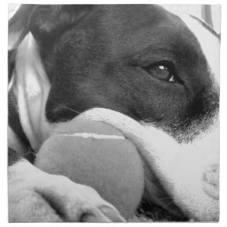 cute sad looking pitbull dog black white with ball cloth napkin