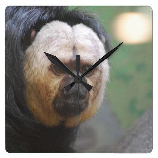 Cute Saki Monkey Wallclock