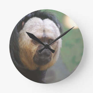 Cute Saki Monkey Wallclocks