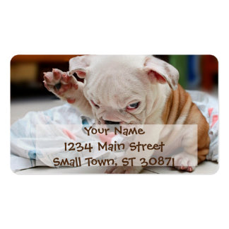 Cute Salute English Bulldog Puppy Double-Sided Standard Business Cards (Pack Of 100)