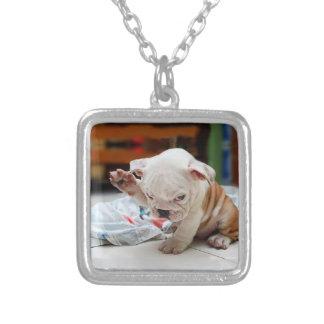Cute Salute English Bulldog Puppy Square Pendant Necklace