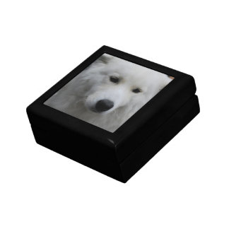 Cute Samoyed Gift Box