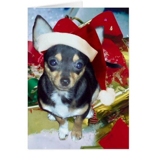 Cute Santa Chihuahua AngelPearlGirl Card