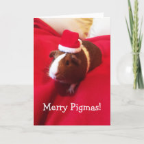 Cute Santa Guinea Pig Christmas Holiday