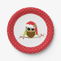 Cute Santa Owl Christmas Party Paper Plates