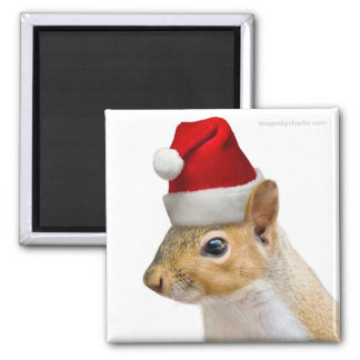 Cute Santa Squirrel Christmas Magnet