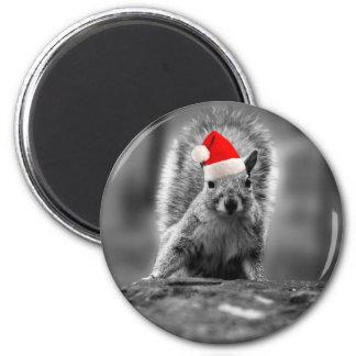 Cute Santa Squirrel Magnet