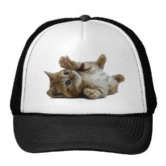 Cute save kitten trucker hat