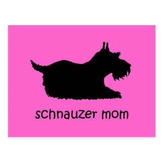 Cute Schnauzer Post Cards
