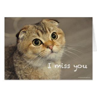 Cute scottish fold cat miss you card