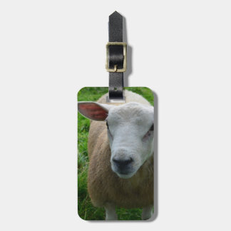 Cute Scottish Sheep Tag For Luggage