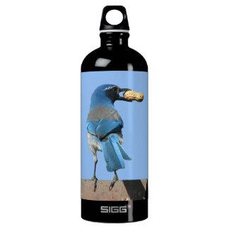 Cute Scrub Jay & Peanut Aluminum Water Bottle