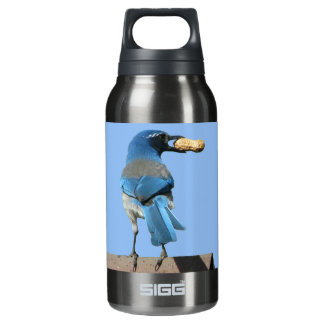 Cute Scrub Jay & Peanut SIGG Thermo 0.3L Insulated Bottle