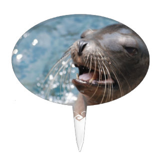 Cute Sea Lion Pick Cake Toppers