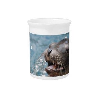 Cute Sea Lion Pitcher