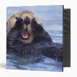 Cute Sea Otter | Alaska, USA 3 Ring Binder