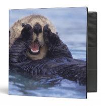 Cute Sea Otter   Alaska, USA 3 Ring Binder