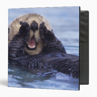 Cute Sea Otter | Alaska, USA 3 Ring Binder