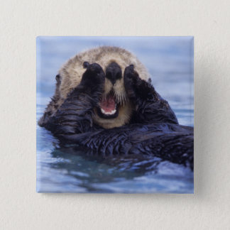 Cute Sea Otter | Alaska, USA Button