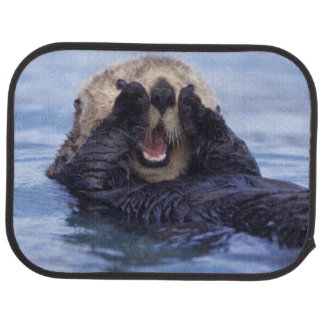 Cute Sea Otter | Alaska, USA Car Floor Mat