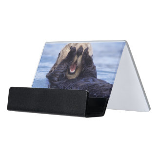 Cute Sea Otter   Alaska, USA Desk Business Card Holder