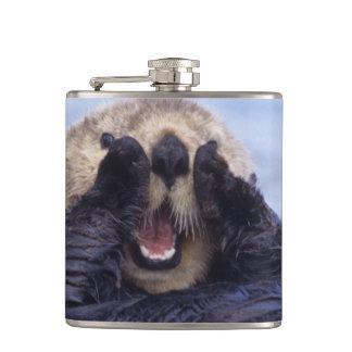 Cute Sea Otter   Alaska, USA Flask