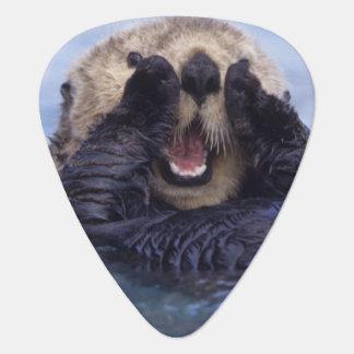 Cute Sea Otter | Alaska, USA Guitar Pick