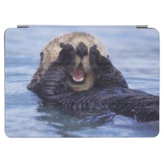 Cute Sea Otter   Alaska, USA iPad Air Cover