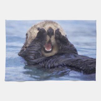 Cute Sea Otter   Alaska, USA Kitchen Towel