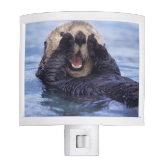 Cute Sea Otter | Alaska, USA Night Light