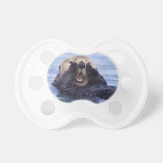 Cute Sea Otter   Alaska, USA Pacifier