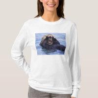 Cute Sea Otter   Alaska, USA T-Shirt