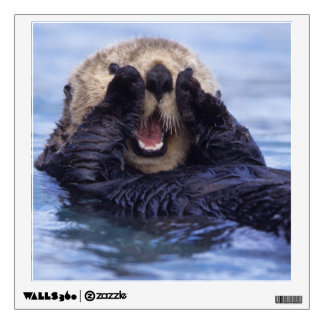 Cute Sea Otter | Alaska, USA Wall Sticker