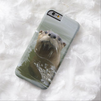 Cute Sea Otter Photo Barely There iPhone 6 Case