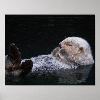 Cute Sea Otter Poster