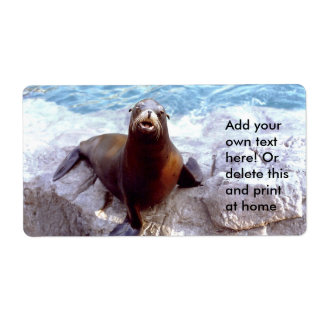 Cute Seal on a Rock Label