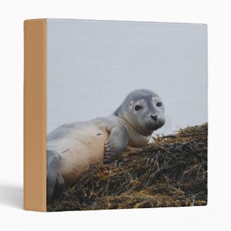 Cute Seal Pup Binder