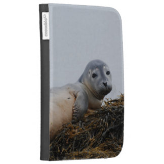 Cute Seal Pup Kindle 3 Cover