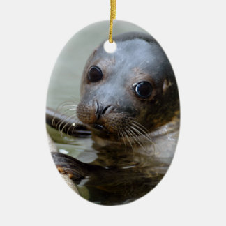Cute Seal Pup Ceramic Ornament