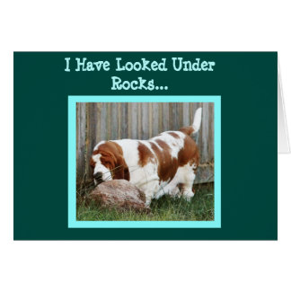 Cute Searching Basset On Funny Birthday Card