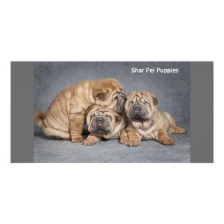 Cute Shar Pei Puppies Card