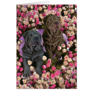 Cute Shar pei puppies in a bed of roses Card
