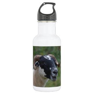 Cute Sheep 18oz Water Bottle