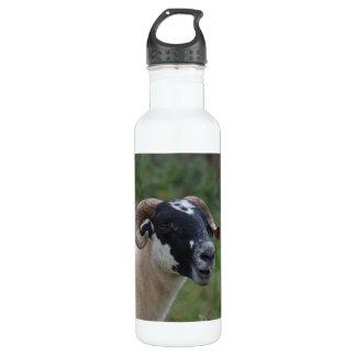 Cute Sheep 24oz Water Bottle