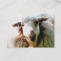 CUTE SHEEP BUSINESS CARD