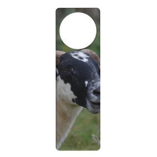 Cute Sheep Door Hanger