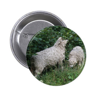 Cute Sheep Eating Leaves Button