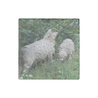 Cute Sheep Eating Leaves Stone Magnets