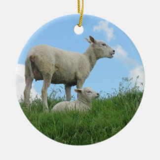 Cute Sheep Photo Ornament